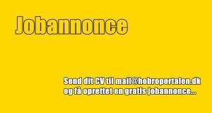 jobannonce1